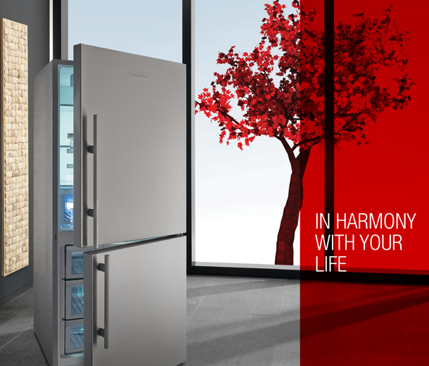 in_harmony_with_your_life_refrigerastos
