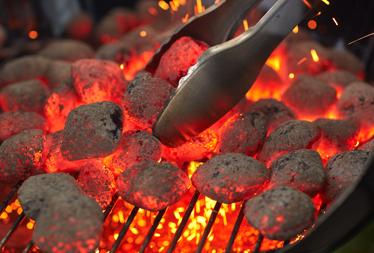 briquettes_callout_2.png